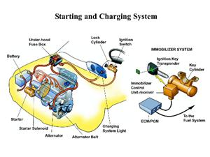 Picture of components in the starting and charging system of a car